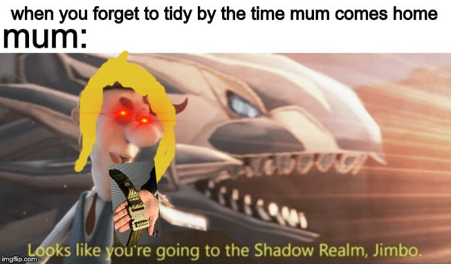 Looks like you're going to the shadow realm jimbo |  when you forget to tidy by the time mum comes home; mum: | image tagged in looks like youre going to the shadow realm jimbo | made w/ Imgflip meme maker