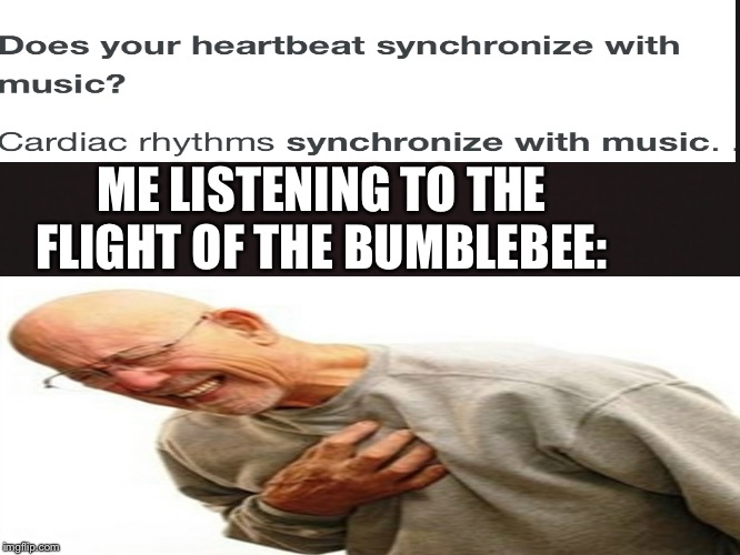 Music kills |  ME LISTENING TO THE FLIGHT OF THE BUMBLEBEE: | image tagged in blank template,right in the childhood,heart attack,music | made w/ Imgflip meme maker