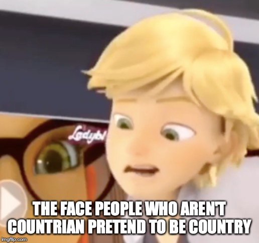 country acting Adrien | THE FACE PEOPLE WHO AREN'T COUNTRIAN PRETEND TO BE COUNTRY | image tagged in country acting adrien,memes | made w/ Imgflip meme maker