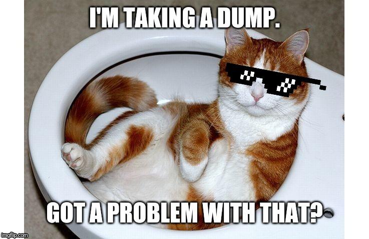 Repost Funny Cat Memes Memes Gifs Imgflip