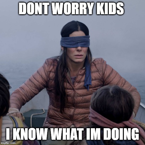 Bird Box | DONT WORRY KIDS I KNOW WHAT IM DOING | image tagged in memes,bird box | made w/ Imgflip meme maker