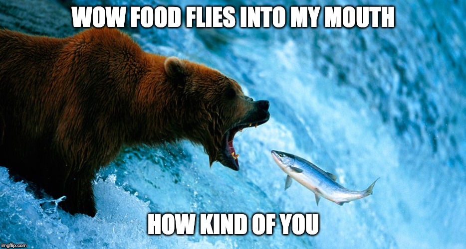 Flying food | WOW FOOD FLIES INTO MY MOUTH HOW KIND OF YOU | image tagged in funny,food,nature,fly | made w/ Imgflip meme maker
