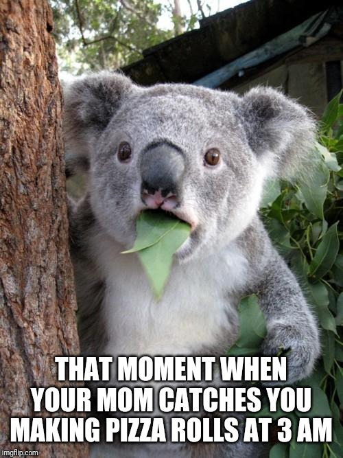 Surprised Koala |  THAT MOMENT WHEN YOUR MOM CATCHES YOU MAKING PIZZA ROLLS AT 3 AM | image tagged in memes,surprised koala | made w/ Imgflip meme maker