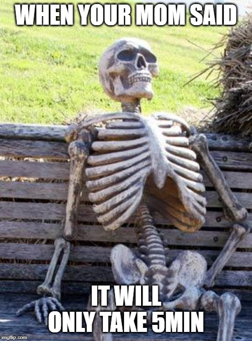 Waiting Skeleton | WHEN YOUR MOM SAID IT WILL ONLY TAKE 5MIN | image tagged in memes,waiting skeleton | made w/ Imgflip meme maker
