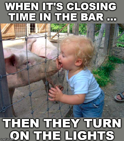 How many times have you done this or seen a friend do it. | WHEN IT'S CLOSING  TIME IN THE BAR ... THEN THEY TURN ON THE LIGHTS | image tagged in you're drunk,bars,kissing,pig | made w/ Imgflip meme maker