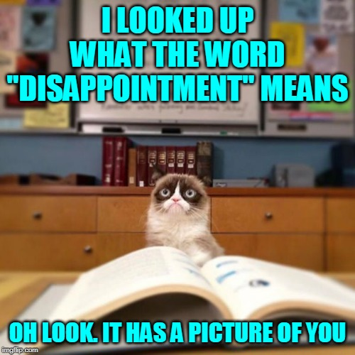 "Grumpy Cat Unabridged. | I LOOKED UP WHAT THE WORD ""DISAPPOINTMENT"" MEANS OH LOOK. IT HAS A PICTURE OF YOU 