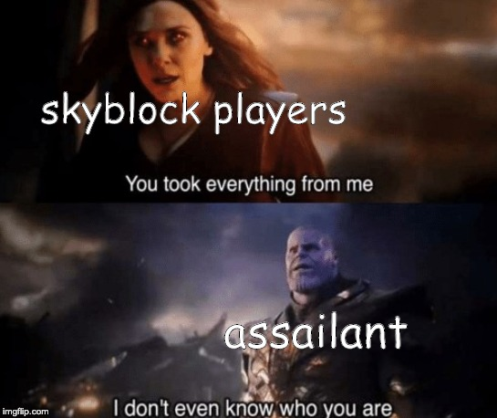 you took everything from me |  skyblock players; assailant | image tagged in you took everything from me | made w/ Imgflip meme maker