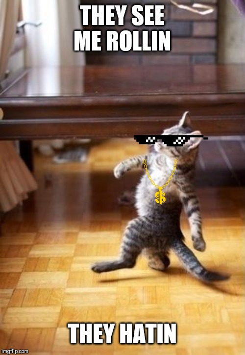 Cool Cat Stroll | THEY SEE ME ROLLIN THEY HATIN | image tagged in memes,cool cat stroll | made w/ Imgflip meme maker