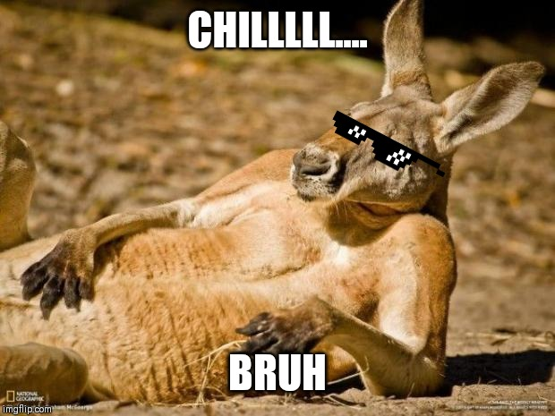 Chillin Kangaroo | CHILLLLL.... BRUH | image tagged in chillin kangaroo | made w/ Imgflip meme maker