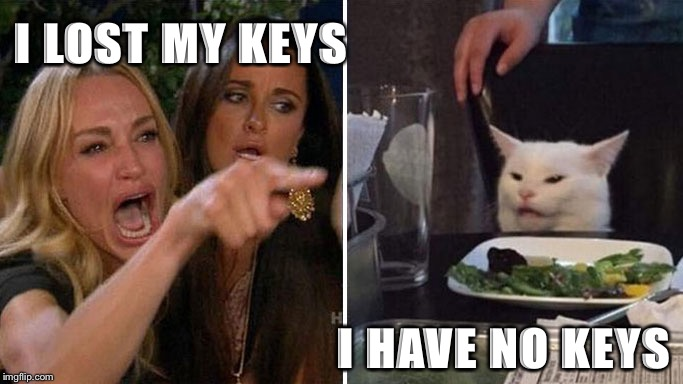 I lost my keys! / I have no keys. | I LOST MY KEYS I HAVE NO KEYS | image tagged in angry lady cat | made w/ Imgflip meme maker