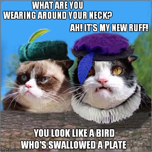 Grumpys Elizabethan Reincarnation |  WHAT ARE YOU WEARING AROUND YOUR NECK? AH! IT'S MY NEW RUFF! YOU LOOK LIKE A BIRD; WHO'S SWALLOWED A PLATE | image tagged in fun,grumpy cat,blackadder,quotes | made w/ Imgflip meme maker