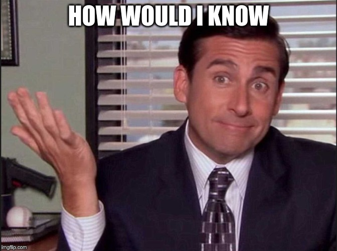 HOW WOULD I KNOW | image tagged in michael scott | made w/ Imgflip meme maker