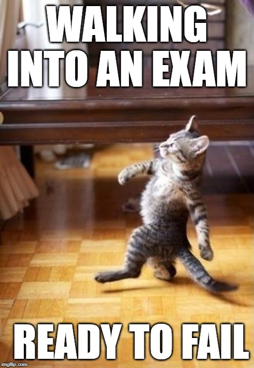 Cool Cat Stroll |  WALKING INTO AN EXAM; READY TO FAIL | image tagged in memes,cool cat stroll | made w/ Imgflip meme maker