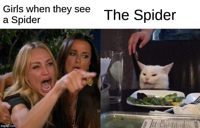 Women vs Spiders | Girls when they see  a Spider The Spider | image tagged in memes,dank memes,funny memes,funny,funny cat memes,woman yelling at cat | made w/ Imgflip meme maker