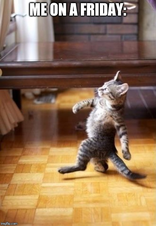 Cool Cat Stroll |  ME ON A FRIDAY: | image tagged in memes,cool cat stroll | made w/ Imgflip meme maker