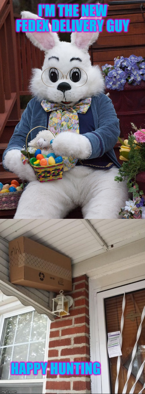 Hide all the packages! |  I'M THE NEW FEDEX DELIVERY GUY; HAPPY HUNTING | image tagged in easter bunny,happy easter,44colt,fedex,package,mailman | made w/ Imgflip meme maker