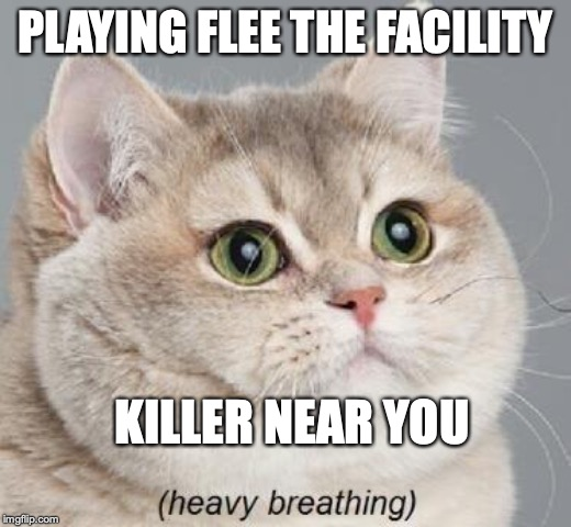 Heavy Breathing Cat | PLAYING FLEE THE FACILITY KILLER NEAR YOU | image tagged in memes,heavy breathing cat | made w/ Imgflip meme maker