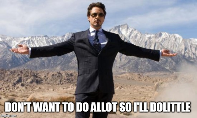 DON'T WANT TO DO ALLOT SO I'LL DOLITTLE | image tagged in rdj-ironman | made w/ Imgflip meme maker