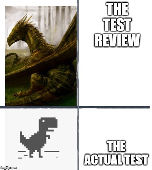 School life | THE TEST REVIEW THE ACTUAL TEST | image tagged in comparison | made w/ Imgflip meme maker