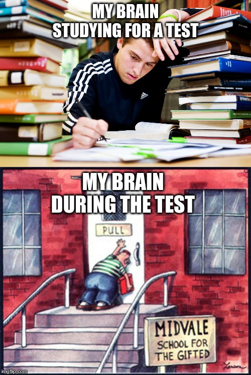 MY BRAIN STUDYING FOR A TEST MY BRAIN DURING THE TEST | image tagged in far side push pull,studying | made w/ Imgflip meme maker
