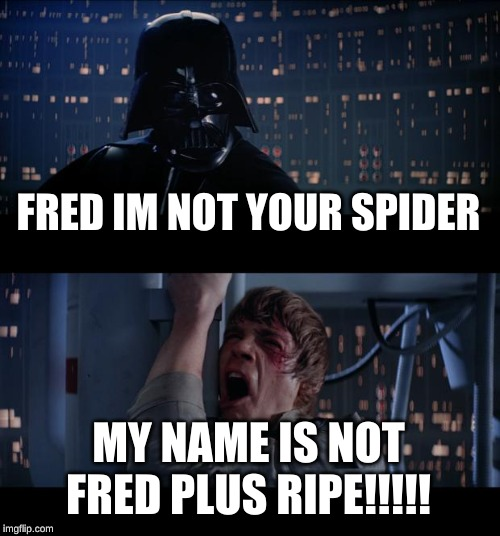 Star Wars No Meme | FRED IM NOT YOUR SPIDER MY NAME IS NOT FRED PLUS RIPE!!!!! | image tagged in memes,star wars no | made w/ Imgflip meme maker