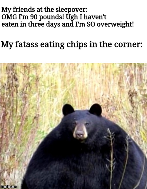Fatsoo ORIGIONAL MEME | My friends at the sleepover: OMG I'm 90 pounds! Ugh I haven't eaten in three days and I'm SO overweight! My fatass eating chips in the corne | image tagged in fat,memes,funny,bear meme | made w/ Imgflip meme maker