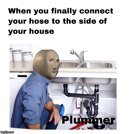 Plummer | image tagged in stonks,not stonks,stonks not stonks,helth,hac,plummer | made w/ Imgflip meme maker