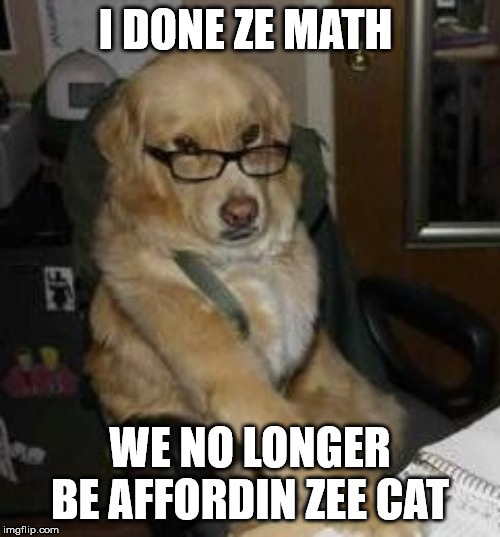 smart dog | I DONE ZE MATH WE NO LONGER BE AFFORDIN ZEE CAT | image tagged in smart dog | made w/ Imgflip meme maker