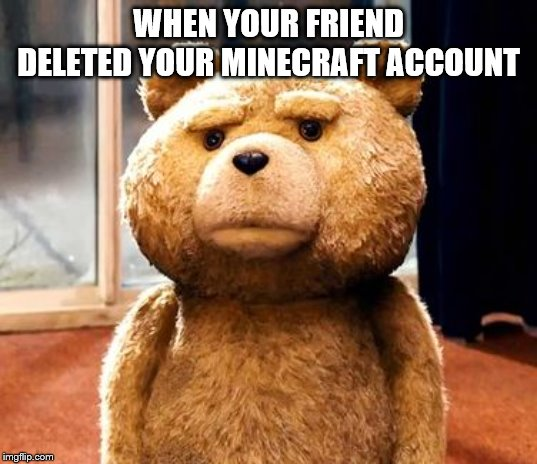 TED |  WHEN YOUR FRIEND DELETED YOUR MINECRAFT ACCOUNT | image tagged in memes,ted | made w/ Imgflip meme maker