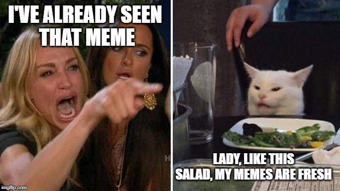 Angry lady cat | I'VE ALREADY SEEN  THAT MEME LADY, LIKE THIS SALAD, MY MEMES ARE FRESH | image tagged in angry lady cat | made w/ Imgflip meme maker