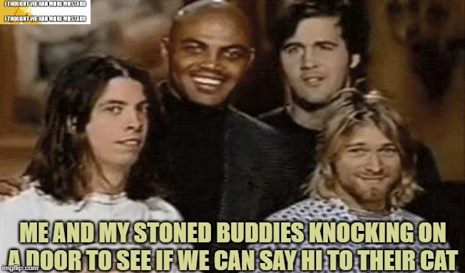 Stoned Buddies Seeking Cat |  ME AND MY STONED BUDDIES KNOCKING ON A DOOR TO SEE IF WE CAN SAY HI TO THEIR CAT | image tagged in nirvana,stoned | made w/ Imgflip meme maker