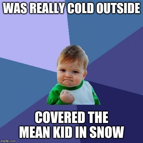 Success Kid | WAS REALLY COLD OUTSIDE COVERED THE MEAN KID IN SNOW | image tagged in memes,success kid | made w/ Imgflip meme maker