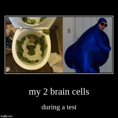 brain cells | my 2 brain cells | during a test | image tagged in funny,demotivationals,bruh,2,brain cells,test | made w/ Imgflip demotivational maker