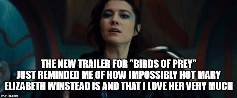"Mary Elizabeth Winstead Meme | THE NEW TRAILER FOR ""BIRDS OF PREY"" JUST REMINDED ME OF HOW IMPOSSIBLY HOT MARY ELIZABETH WINSTEAD IS AND THAT I LOVE HER VERY MUCH 