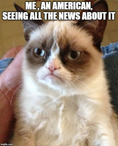ME , AN AMERICAN, SEEING ALL THE NEWS ABOUT IT | image tagged in memes,grumpy cat | made w/ Imgflip meme maker