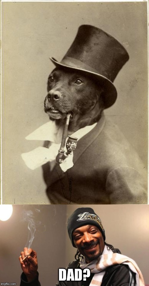 DAD? | image tagged in old money dog,snoop dogg | made w/ Imgflip meme maker