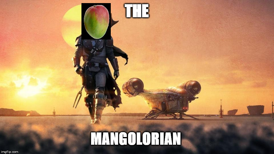 Mandalorian |  THE; MANGOLORIAN | image tagged in mandalorian | made w/ Imgflip meme maker