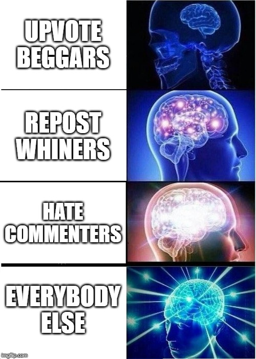 Expanding Brain |  UPVOTE BEGGARS; REPOST WHINERS; HATE COMMENTERS; EVERYBODY ELSE | image tagged in memes,expanding brain | made w/ Imgflip meme maker