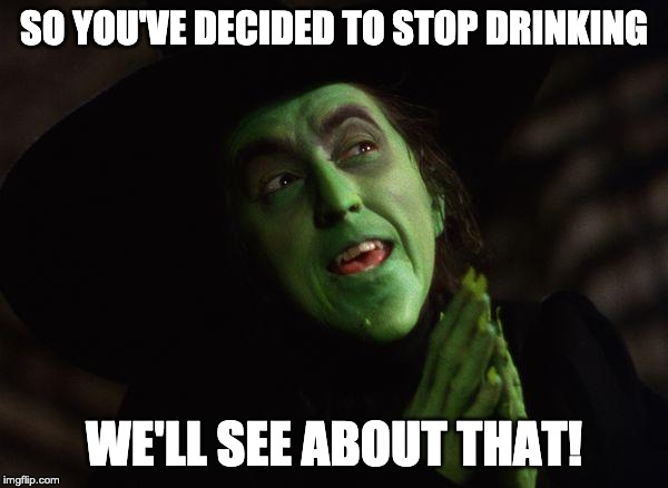 Wicked Witch West |  SO YOU'VE DECIDED TO STOP DRINKING; WE'LL SEE ABOUT THAT! | image tagged in wicked witch west | made w/ Imgflip meme maker