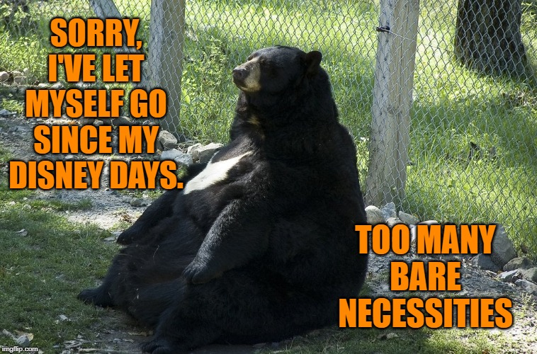 SORRY, I'VE LET MYSELF GO SINCE MY DISNEY DAYS. TOO MANY BARE NECESSITIES | made w/ Imgflip meme maker