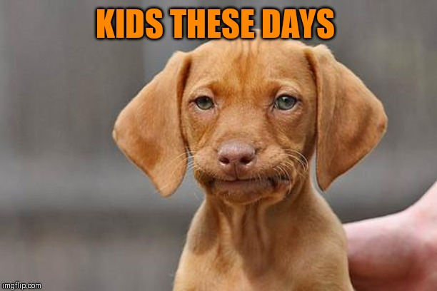 KIDS THESE DAYS | image tagged in dissapointed puppy | made w/ Imgflip meme maker