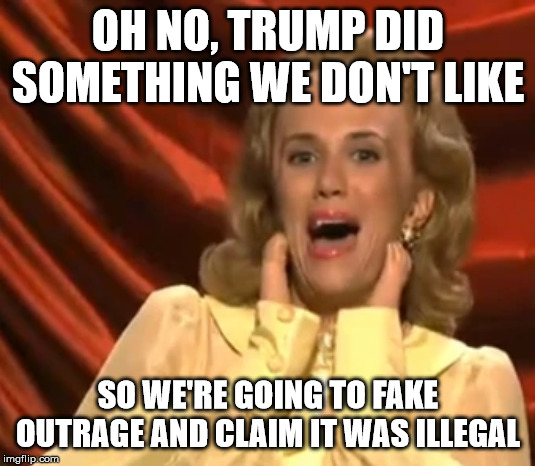 OH NO, TRUMP DID SOMETHING WE DON'T LIKE SO WE'RE GOING TO FAKE OUTRAGE AND CLAIM IT WAS ILLEGAL | image tagged in liberal,trump impeachment,liberal logic | made w/ Imgflip meme maker