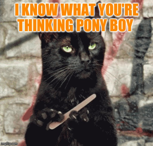 I KNOW WHAT YOU'RE THINKING PONY BOY | made w/ Imgflip meme maker