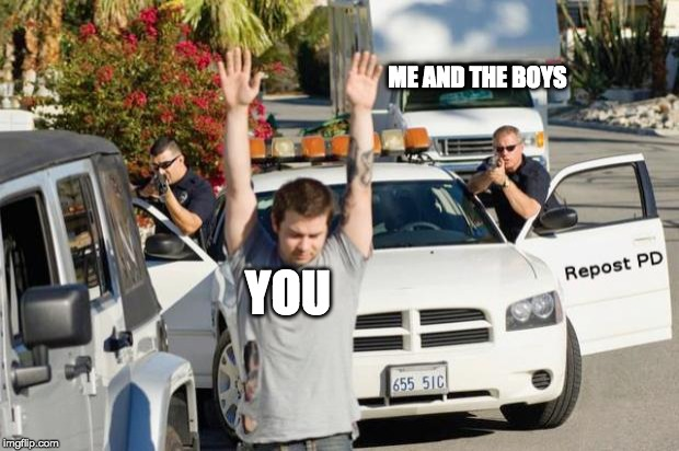Repost Police | YOU ME AND THE BOYS | image tagged in repost police | made w/ Imgflip meme maker