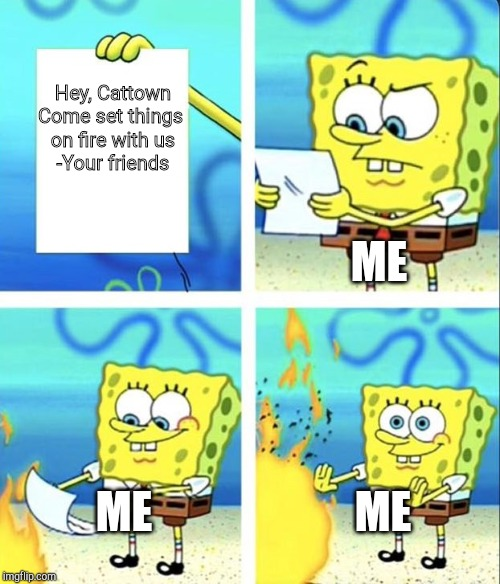 Spongebob yeet | Hey, Cattown Come set things  on fire with us -Your friends ME ME ME | image tagged in spongebob yeet | made w/ Imgflip meme maker