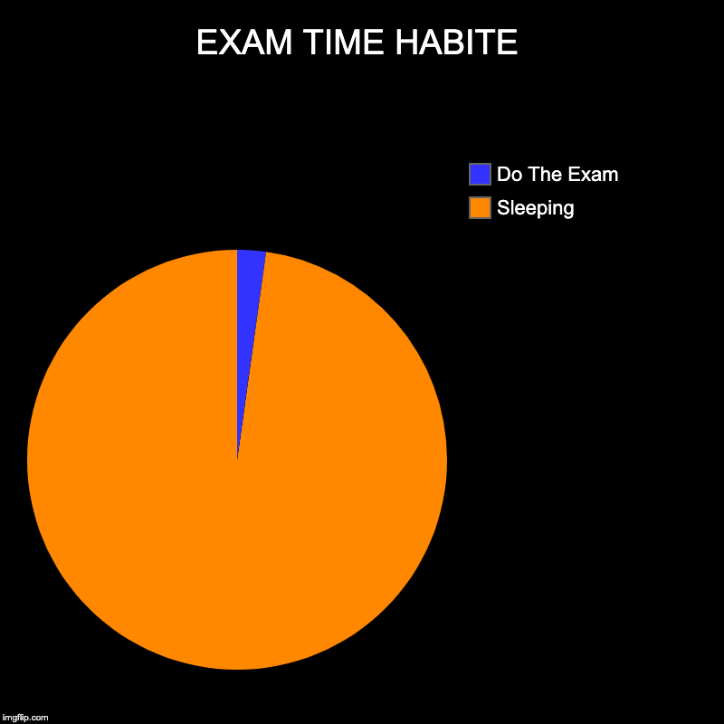 EXAM TIME HABITE | Sleeping , Do The Exam | image tagged in charts,pie charts | made w/ Imgflip chart maker