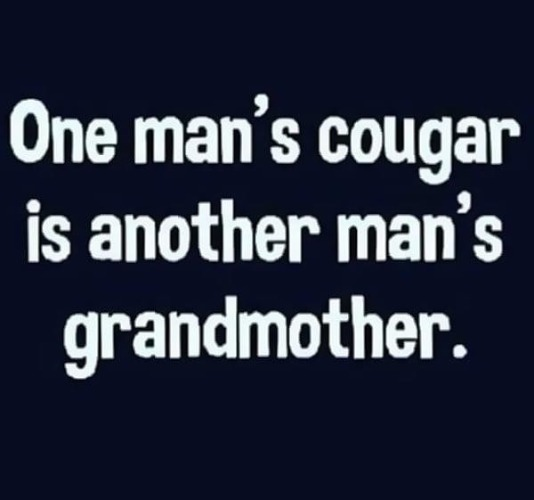 One Man's Cougar is Another Man's Grandmother | image tagged in cougar,grandmother,sexy senior citizens,sexy women,sexy woman,funny | made w/ Imgflip meme maker
