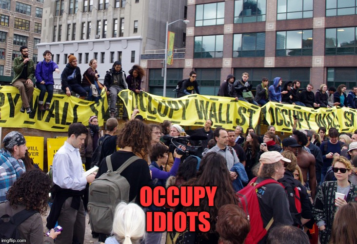 Occupy Wall Street | OCCUPY IDIOTS | image tagged in occupy wall street | made w/ Imgflip meme maker