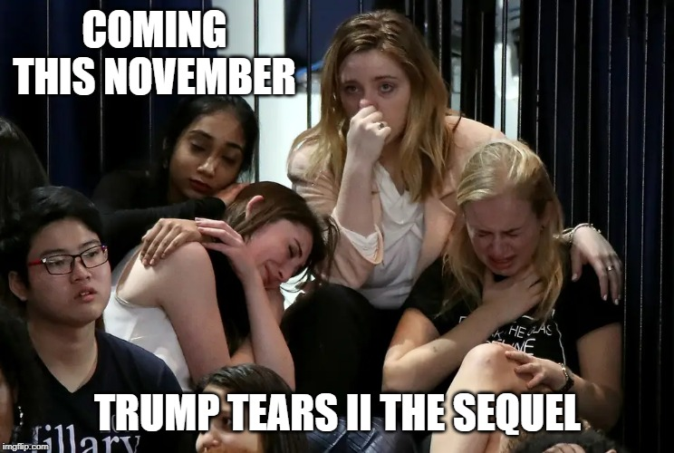Trump Tears II The Sequel |  COMING THIS NOVEMBER; TRUMP TEARS II THE SEQUEL | image tagged in trump,democrats,liberals | made w/ Imgflip meme maker