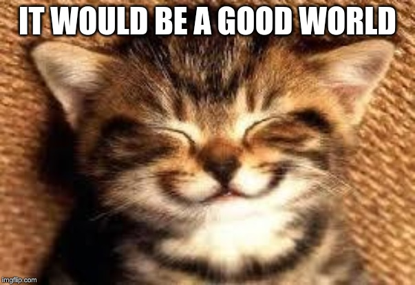IT WOULD BE A GOOD WORLD | image tagged in smiley cat | made w/ Imgflip meme maker